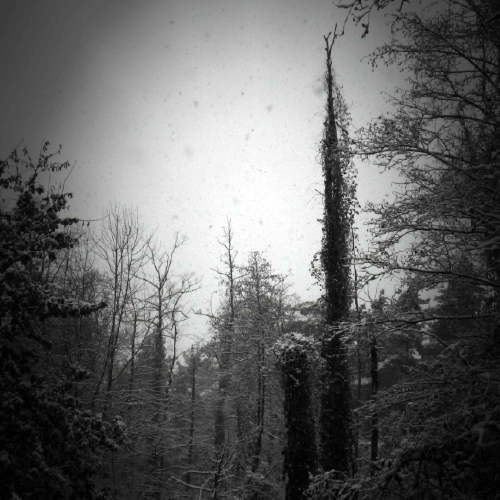 WINTER_DEUERLING_014